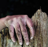 Dirty hand of a man on the edge of a broken fence — Stock Photo