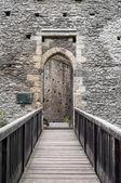 Castle door. — Stock Photo