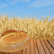 Warm crunchy bread on wooden surface against of ripe wheat. — Stock Photo #68765005