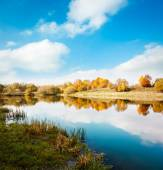 Autumn Landscape. Yellow Trees, Blue Sky and Lake. — Stockfoto