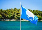 Blue Flag on Summer Sea Background — Stock Photo