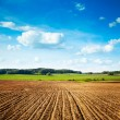 Spring Landscape with Plowed Field and Blue Sky — Stock Photo #66301533