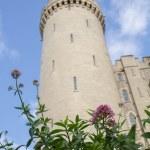 Arundel Castle — Stock Photo #59979873