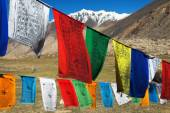Prayer flags with stupas - Himachal Pradesh - India — Stock Photo