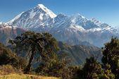View of mount Dhaulagiri - Nepal — Stock Photo