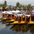 Shikara boats on Dal Lake with houseboats — Stock Photo #53095987