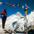 View of Everest with tourist and buddhist prayer flags — Stock Photo #53096809