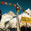 View of Everest - way to Everest Base Camp - Nepal — Stock Photo #53096847