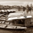 Shikara boats on Dal Lake with houseboats — Stock Photo #53521721