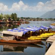 Shikara boats on Dal Lake with houseboats — Stock Photo #54398497