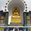 Detail of Tall Shanti Stupa near Leh — Stock Photo #54398759