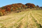 Autumnal view of strazov mount in strazovske vrchy — Stock Photo