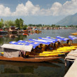 Shikara boats on Dal Lake with houseboats — Stock Photo #55520257