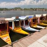 Shikara boats on Dal Lake with houseboats — Stock Photo #62671211