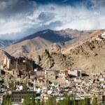 Leh Palace - Namgyal Tsemo Gompa — Stock Photo #62672133