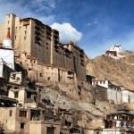Leh Palace - Namgyal Tsemo Gompa - Leh - Ladakh — Stock Photo #62672497