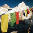 Evening view of Mount Everest with buddhist prayer flags — Stock Photo #64297237