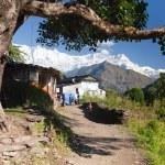 Life under himalayas - Dhaulagiri himal — Stock Photo #64299835