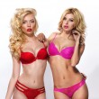 Two blondes in lingerie — Stock Photo #69629361