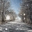 Winter road on a sunny frosty day with blue sky and snow, christmas background — Stock Video #60200533