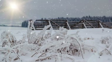 Snowing winter landscape with sun and snow barrier, christmas background — Stock Video