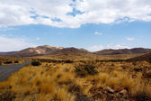 Panorama of fantrastic Namibia moonscape landscape — Stock fotografie