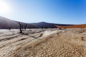Sossusvlei beautiful landscape of death valley, namibia — Stock Photo