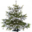 Decorated christmas tree with silver balls  — Foto de Stock   #64035181