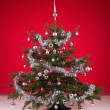 Decorated christmas tree on red background — Stock Photo #64035201