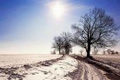 Vinterlandskap med road och träd, blå himmel och solen — Stockfoto