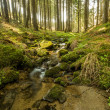 Falls on the small mountain river in a forest — Stock Photo #70891051