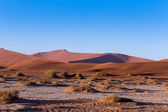 Beautiful landscape of Hidden Vlei in Namib desert — Stock Photo