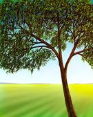Jardín y árbol alto — Foto de Stock