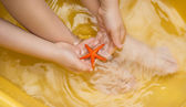 Çocuk elleri ve deniz yıldızı — Stok fotoğraf