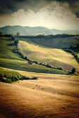 Vintage view of after harvest fields, Toscany, Italy — Stock Photo