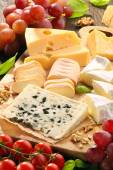 Cheese board - various types of cheese composition — Stock Photo