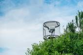 A caged security camera behind bushes. — Stock Photo