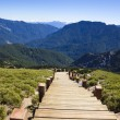 Wood stairs in the hehuanshan forest Recreation area  — Stock Photo #52812085