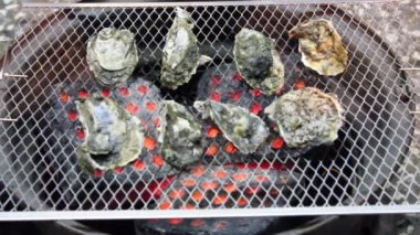 Oysters on the Grill. time lapse — Stock Video