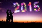 Happy new year 2015. family watching the fireworks and celebrate — Stock Photo