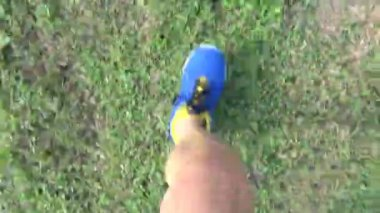 Runner jogging on the grass in park — Stock Video