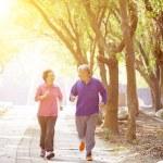 Happy Senior Couple Exercising In the Park — Stock Photo #62923905