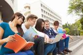 Young group of university students studying — Stock Photo
