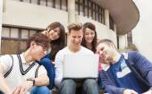 Happy  young group of students watching the laptop — Stock Photo