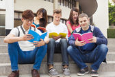 Happy  young group of students study together — Stock Photo