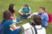 College students studying and discuss together in campus  — Stock Photo
