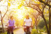 Happy senior couple ride on bicycle  in the park — Stock Photo