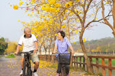 Happy asian senior couple ride on bicycle  in the park — Stock Photo