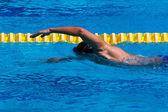 Swimming - Stock Image — Stockfoto