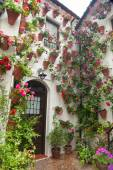 Flowers Decoration of Courtyard, typical house in Spain, Europe — Stok fotoğraf